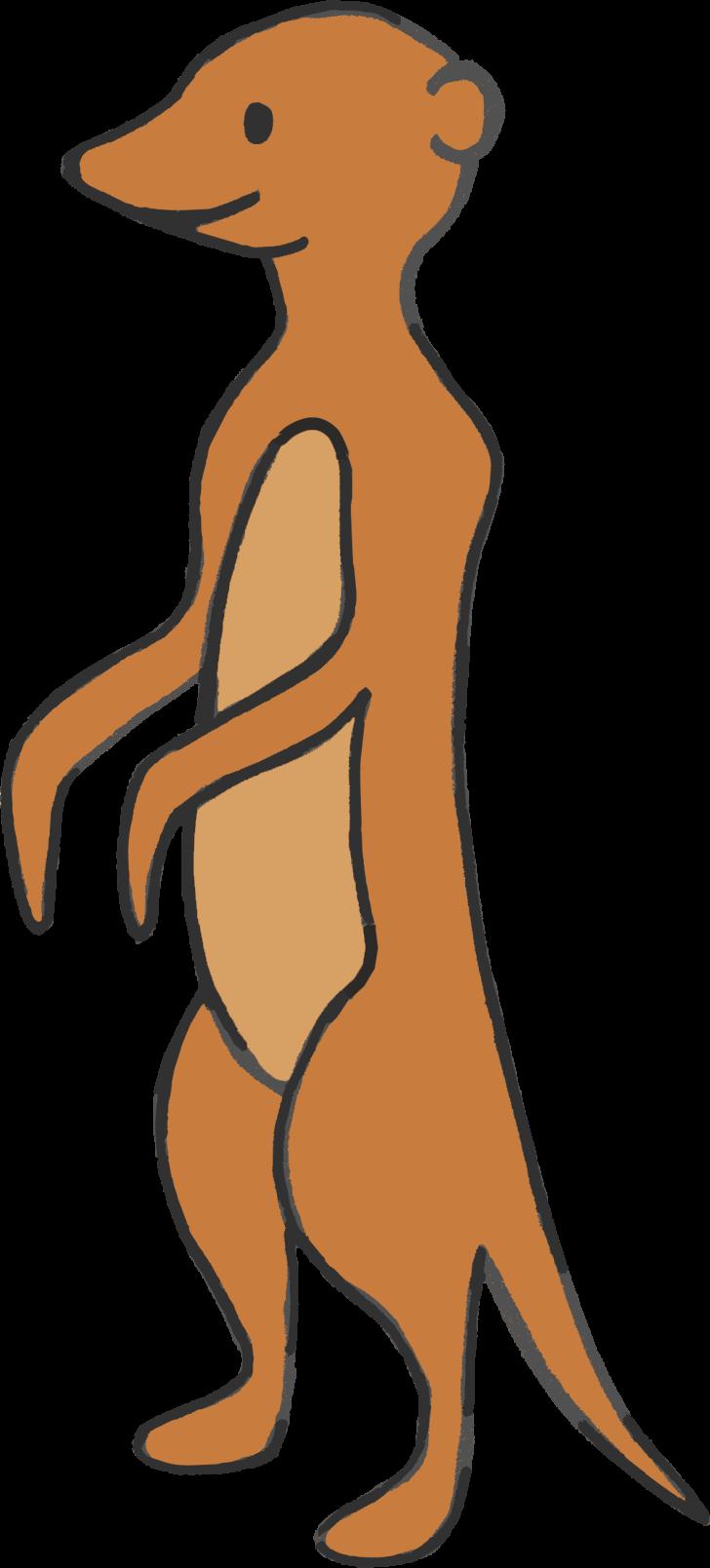 Erdmännchen Erna